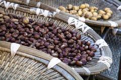 Mercato in Corsica Fotografia Stock