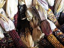 Mercato degli agricoltori Fotografia Stock Libera da Diritti