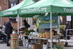 Mercato degli agricoltori di NYC Youthmarket Immagini Stock