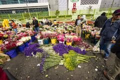 Mercato del fiore in Paloquemao Bogota Colombia Fotografie Stock Libere da Diritti