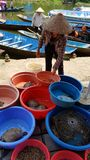 Mercato del fiume alla caverna della pagoda del profumo immagine stock libera da diritti