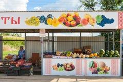 Mercato del giardino dell'agricoltore del campo, Russia Fotografia Stock