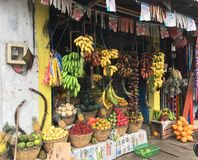 mercato dell'alimento nello Sri Lanka immagini stock libere da diritti