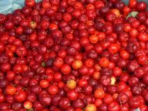 Mercato della frutta Immagini Stock