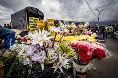 Mercato della verdura e della frutta, Paloquemao, Bogota Colombia immagini stock libere da diritti