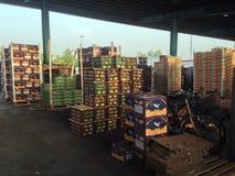 Mercato di frutta immagini stock libere da diritti