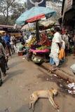 Mercato di frutta in Calcutta Fotografia Stock
