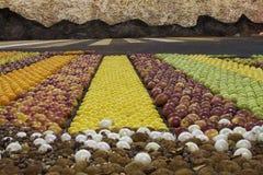 Mercato di frutta dell'esposizione Immagine Stock Libera da Diritti