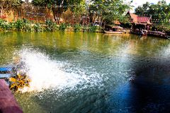 Mercato di galleggiamento di Ayothaya, buona atmosfera a Ayutthaya fotografia stock