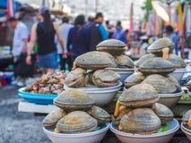 Mercato di Jagalchi - mercato ittico a Pusan Busan, Corea del Sud - varietà di stupore di pesce, di vongole, ecc immagine stock libera da diritti