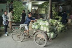 MERCATO FEGETABLE DELLA TAILANDIA CHIANG RAI Fotografie Stock Libere da Diritti