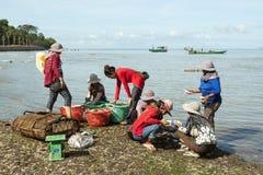 Mercato i Kep, Cambogia del granchio immagine stock