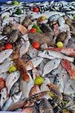 Mercato ittico Immagini Stock Libere da Diritti