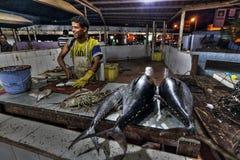 Mercato ittico a Aden immagine stock libera da diritti