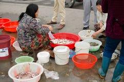 Mercato ittico del bordo della strada Immagini Stock