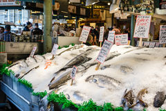 Mercato ittico di posto di luccio Fotografia Stock