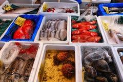 Mercato ittico Giappone Fotografia Stock Libera da Diritti