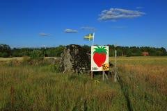 mercato locale della fragola sweden Fotografia Stock Libera da Diritti