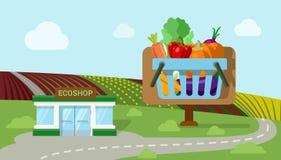 Mercato organico del negozio del ecoshop dell'ortaggio da frutto di agricoltura piano Fotografie Stock Libere da Diritti