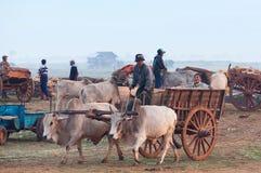 Mercato settimanale nello Stato Shan del Myanmar Fotografia Stock