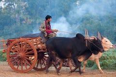 Mercato settimanale nello Stato Shan, Myanmar Immagine Stock Libera da Diritti