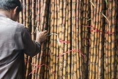 MERCATO SUGAR CANE DELLA CAMBOGIA PHNOM PENH KANDAL immagini stock libere da diritti