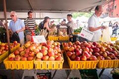 Mercato Union Square NYC degli agricoltori di Greenmarket Immagine Stock