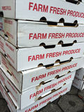 Mercato vegetariano, contenitori freschi di alimento biologico dell'azienda agricola al mercato degli agricoltori Fotografia Stock Libera da Diritti
