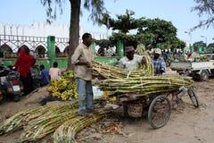 mercato zanzibar Fotografia Stock
