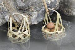 Merce nel carrello degli uova sode in sorgenti di acqua calda della natura fotografia stock libera da diritti