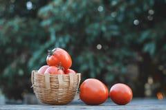 Merce nel carrello del pomodoro su legno Fotografia Stock