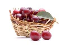 Merce nel carrello della ciliegia isolata su fondo bianco Immagini Stock Libere da Diritti