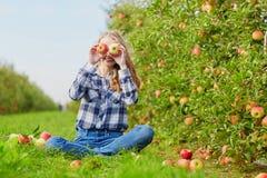 Merce nel carrello delle mele di raccolto della donna sull'azienda agricola Immagini Stock