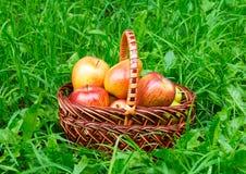 Merce nel carrello delle pere e delle mele Fotografie Stock Libere da Diritti