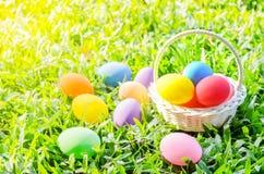 Merce nel carrello delle uova di Pasqua su fienarola dei prati verde Immagini Stock Libere da Diritti