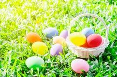 Merce nel carrello delle uova di Pasqua su fienarola dei prati verde Fotografia Stock Libera da Diritti