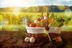 Merce nel carrello delle verdure su suolo con il fondo del paesaggio del raccolto Fotografia Stock