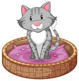 Merce nel carrello di Gray Cat illustrazione di stock