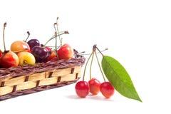 Merce nel carrello gialla e rossa della ciliegia con l'isolato verde della foglia sopra Immagine Stock