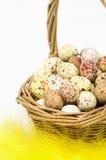 Merce nel carrello macchiata delle uova fotografie stock libere da diritti