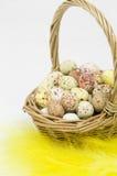 Merce nel carrello macchiata delle uova su fondo bianco Fotografie Stock