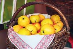 Merce nel carrello organica delle mele di estate Mele fresche in natura Fotografie Stock