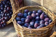 Merce nel carrello organica porpora fresca matura delle prugne sul mercato Tempo di raccolta Frutta fresca che compera al mercato immagini stock