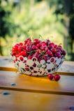 Merce nel carrello rossa della frutta della ciliegia Fotografia Stock
