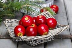 Merce nel carrello rossa delle mele Regolazione tradizionale di natale Fotografie Stock Libere da Diritti