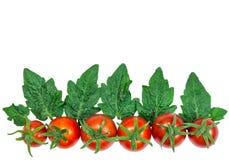 Merce nel carrello rossa fresca dei pomodori su fondo bianco Immagine Stock Libera da Diritti