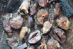 Merce nel carrello secca pesce gatto Fotografie Stock Libere da Diritti