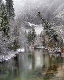 merced flod Arkivbilder