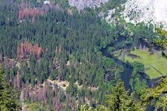 Merced flod från denmil slingan, Yosemite, Yosemite nationalpark Arkivfoton