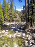 Merced flod i den Yosemite nationalparken Arkivfoton
